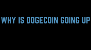 Why Is Dogecoin Going Up